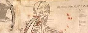 """Kevin Smith desvela una imagen conceptual del hombre-morsa de """"Tusk"""""""