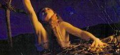 "Sam Raimi prepara una serie de ""Posesi�n Infernal"""