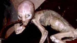 "Trailer de ""Area 51"", lo nuevo de Oren Peli"