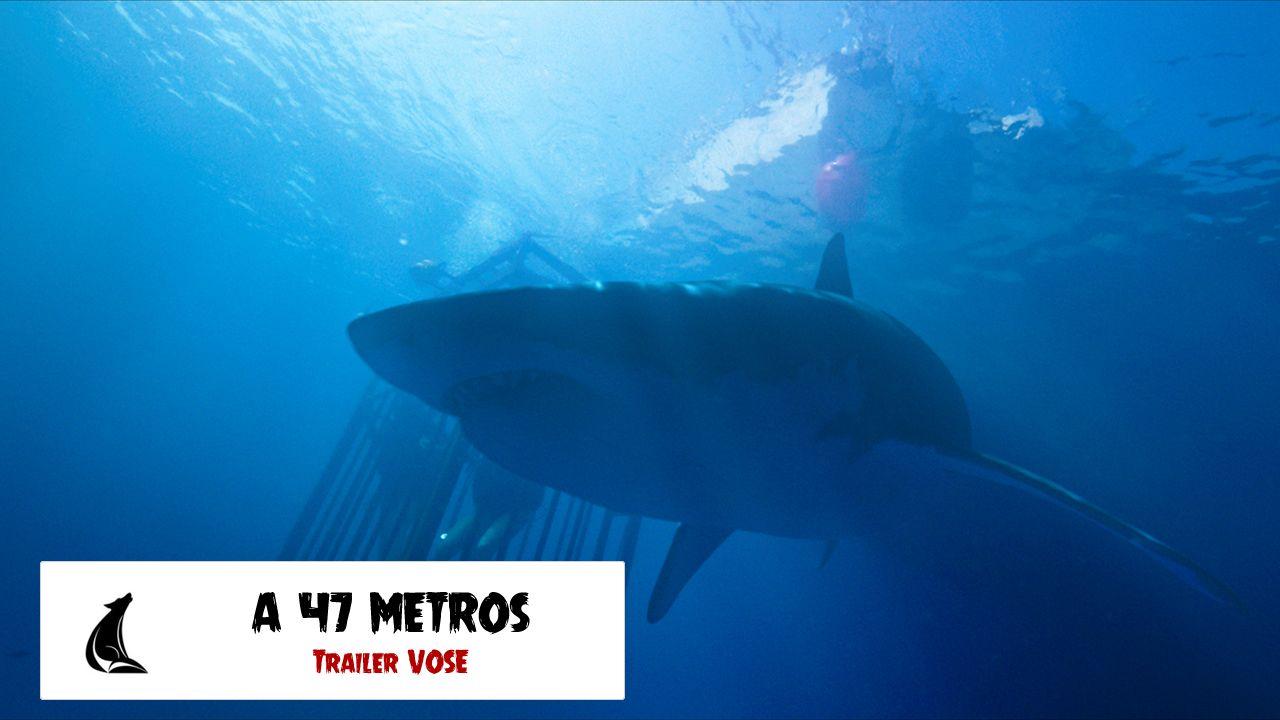 """""""A 47 Metros"""": Tráiler subtitulado al español de la película"""