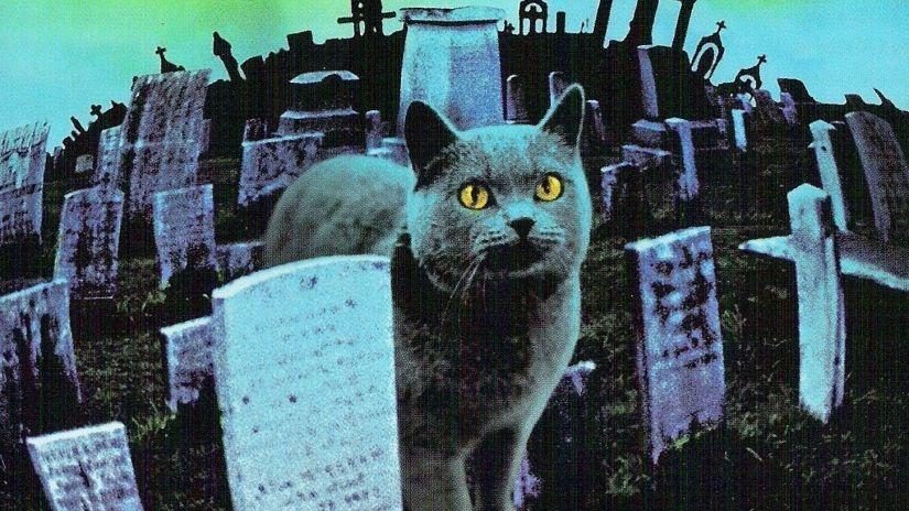 """""""Cementerio de Animales"""": Comienza el rodaje de la nueva versión"""