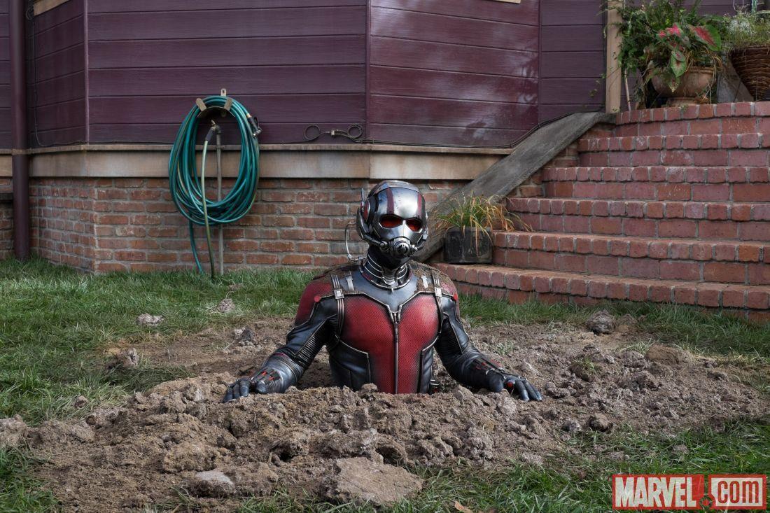 Imagen 43 de Ant-Man