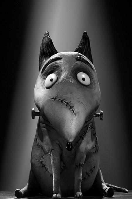Imagen 20 de Frankenweenie 3D