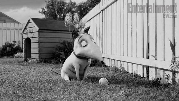 Imagen 3 de Frankenweenie 3D