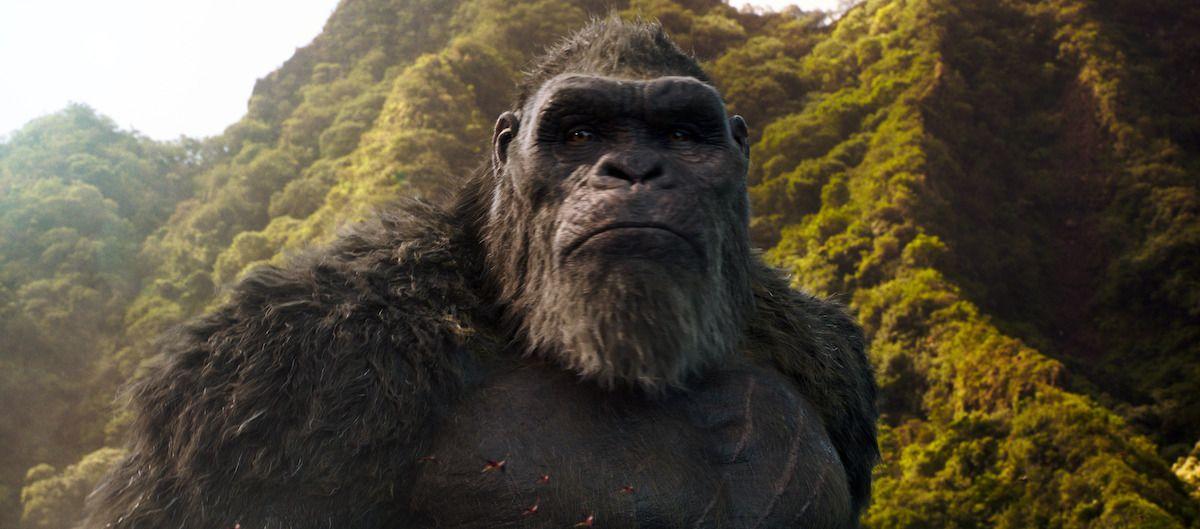 Imagen 14 de Godzilla vs Kong