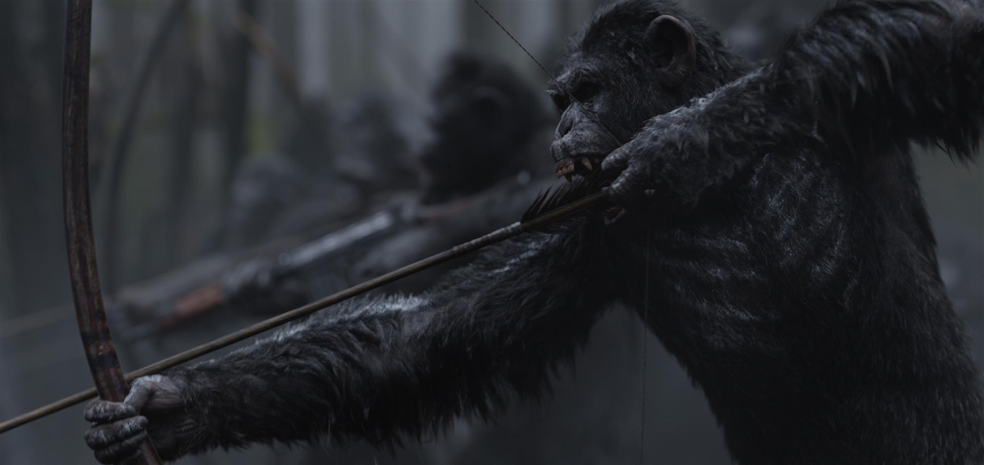 Imagen 3 de La Guerra del Planeta de los Simios
