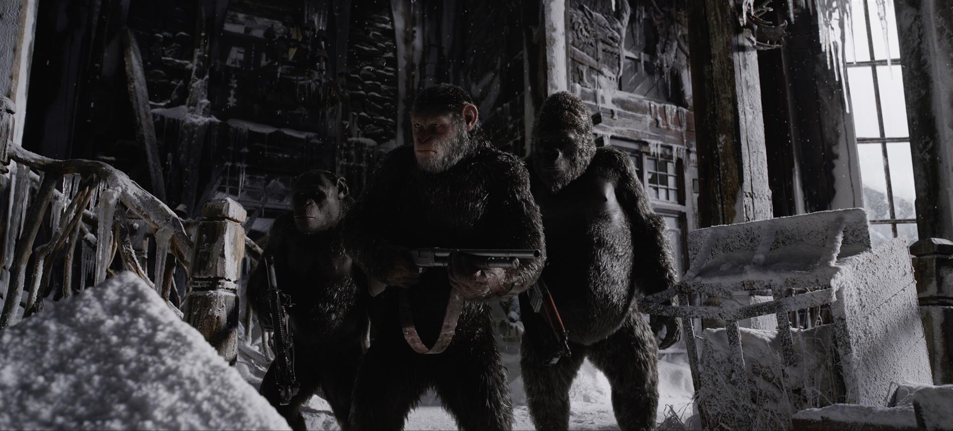 Imagen 4 de La Guerra del Planeta de los Simios