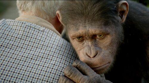 Imagen 1 de El Origen del Planeta de los Simios