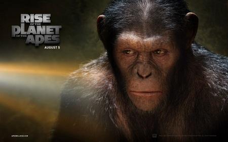 Imagen 11 de El Origen del Planeta de los Simios