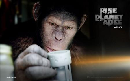 Imagen 14 de El Origen del Planeta de los Simios