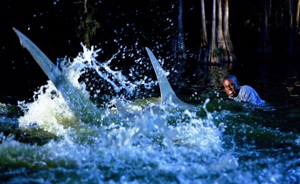 Imagen 11 de Tiburón 3D: La Presa