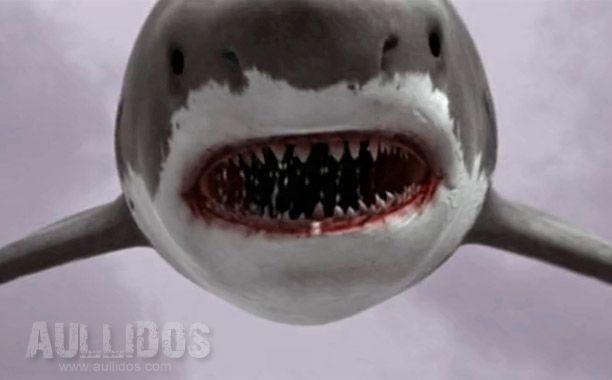 Imagen 12 de Sharknado