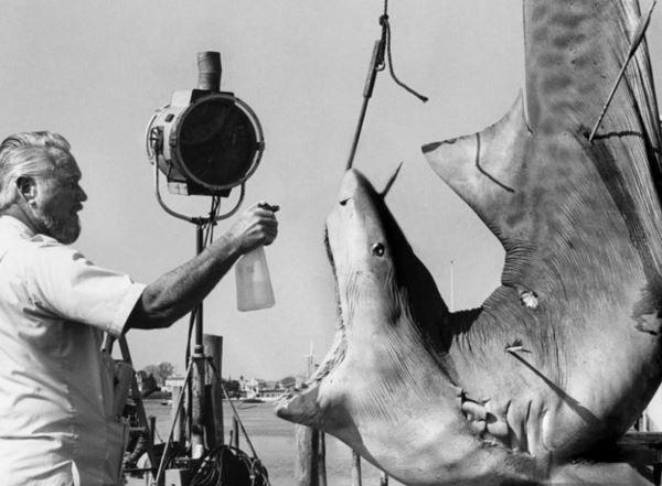 Imagen 13 de Tiburón