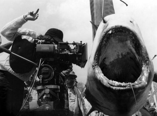 Imagen 15 de Tiburón