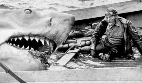 Imagen 16 de Tiburón