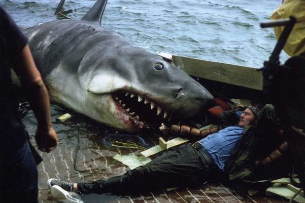 Imagen 23 de Tiburón