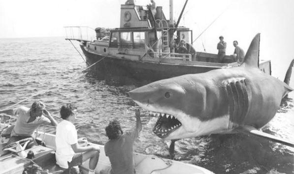 Imagen 5 de Tiburón