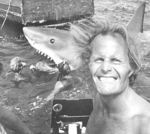 Imagen 6 de Tiburón