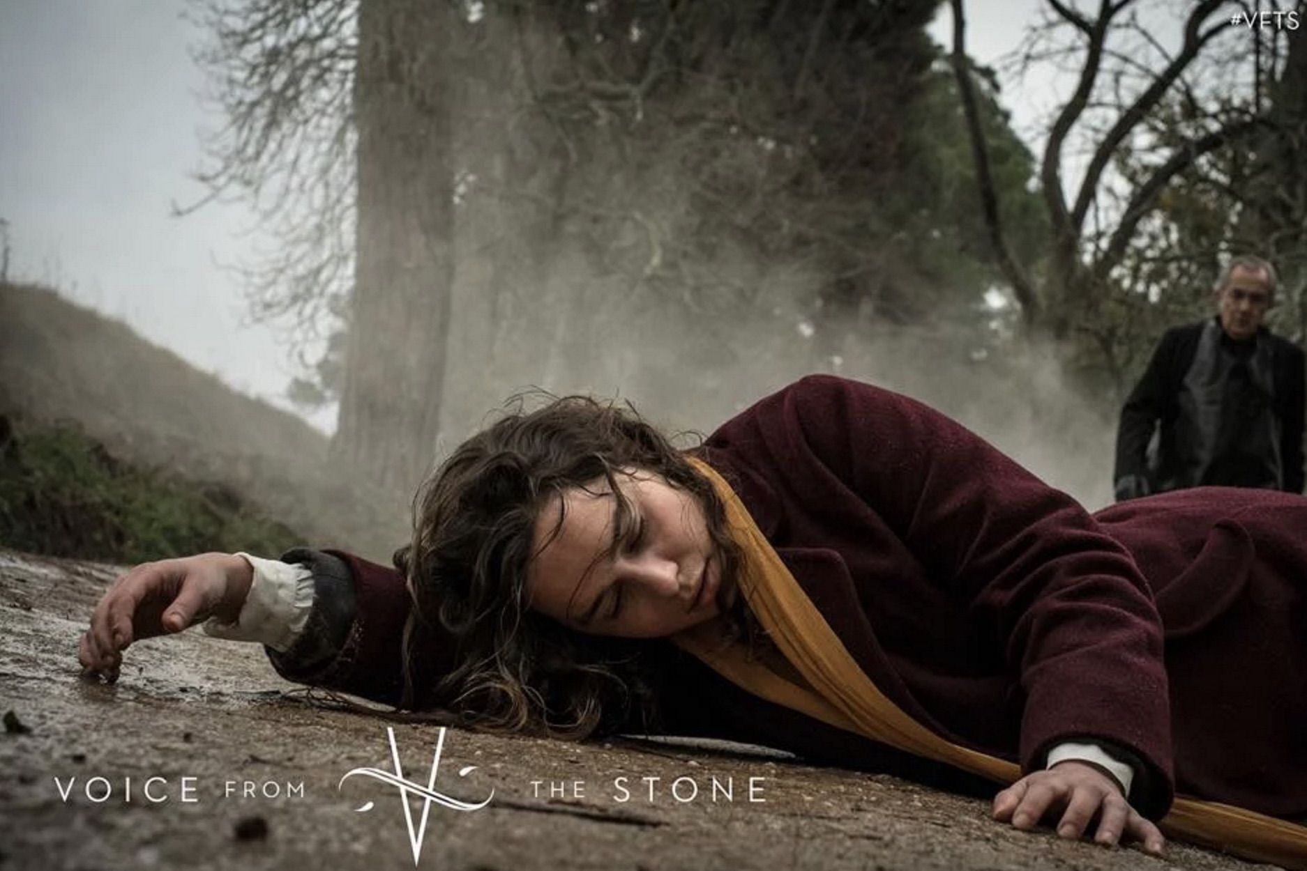 Imagen 2 de Voice From the Stone